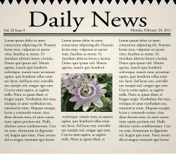Newspaper_icon