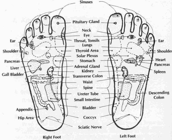 reflex-chart-of-foot